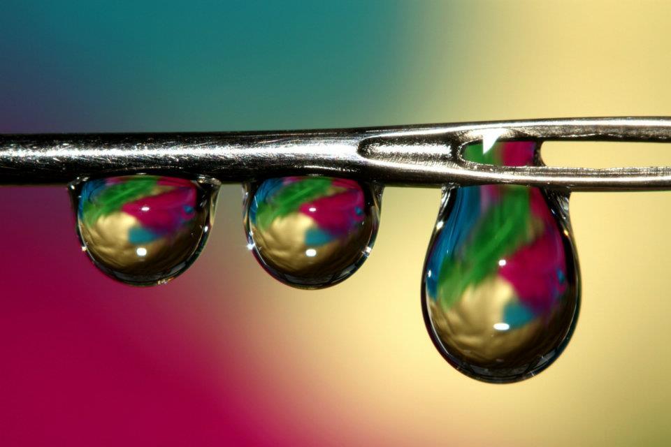 bubble04 Макросъемка Шэрон Джонстон: Капли росы