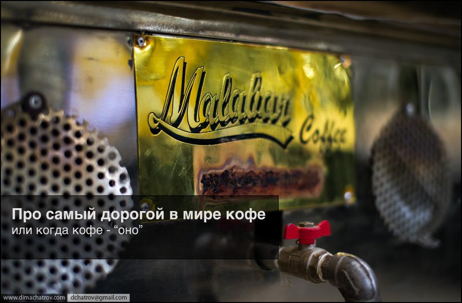 coffee 1 Про самый дорогой в мире кофе