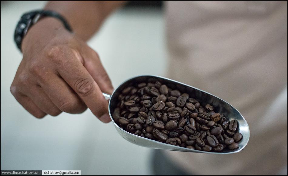 coffee 12 Про самый дорогой в мире кофе