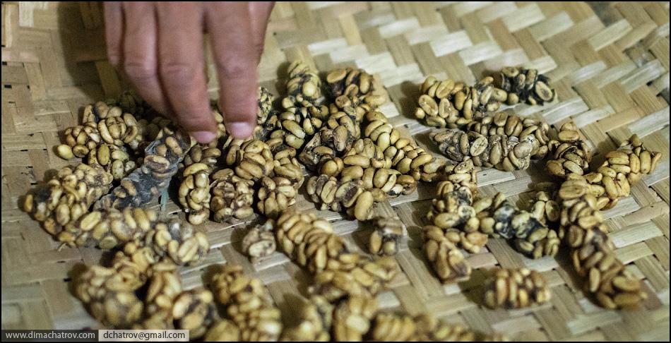 coffee 9 Про самый дорогой в мире кофе
