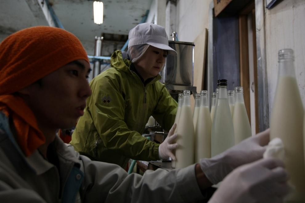 sake02 Как варят традиционное японское саке