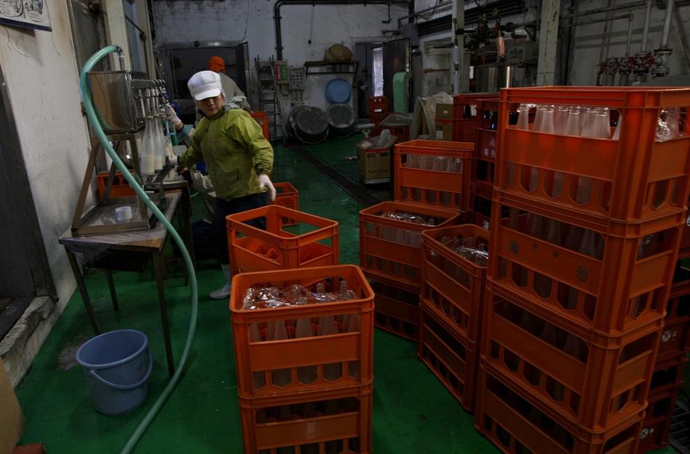 sake14 Как варят традиционное японское саке
