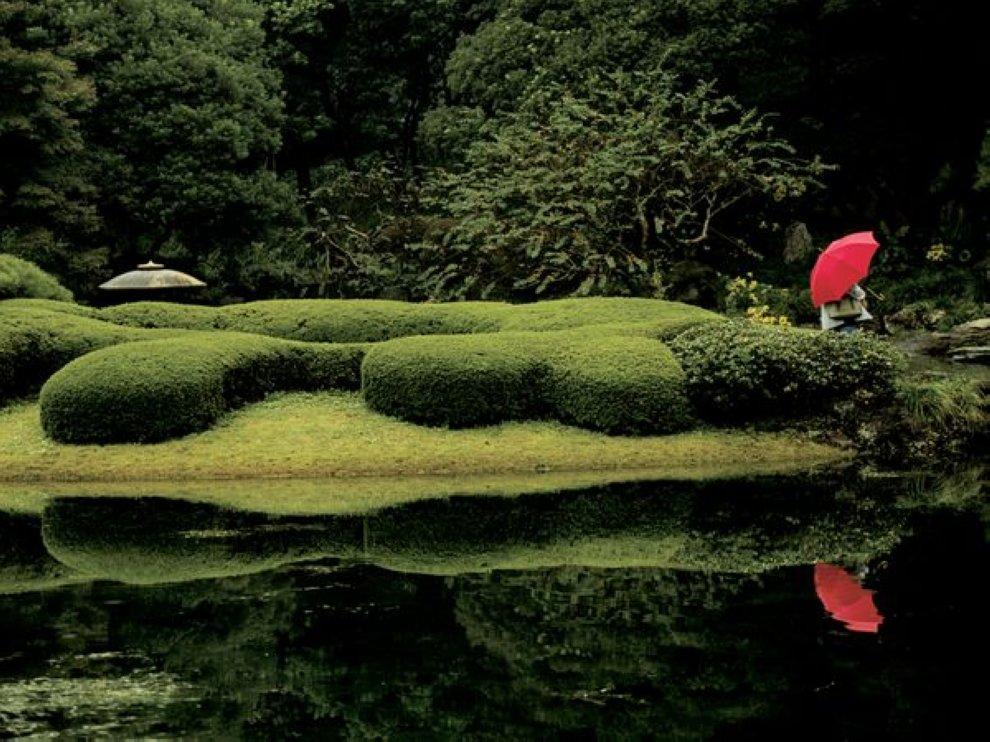 stars20 907x990 Фотошкола National Geographic: Использование цветовой палитры в снимках