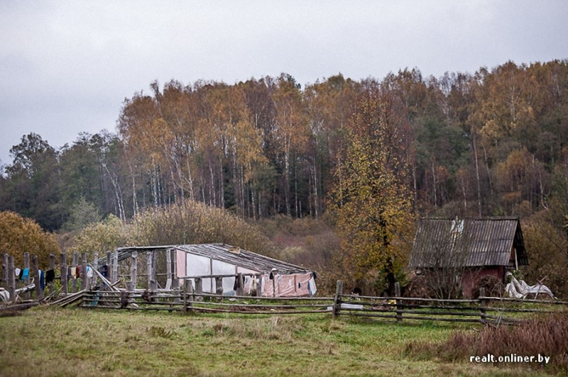 0212 800x532 Белорусские отшельники уже20 летживут безсвета, газа иводопровода, нонасвоей земле