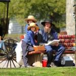 10 фактов про амишей