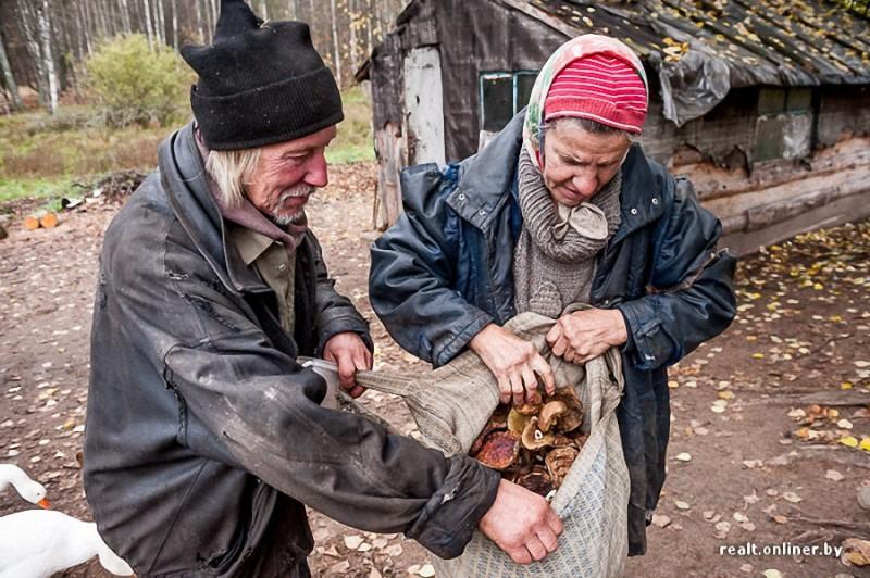 333 800x532 Белорусские отшельники уже20 летживут безсвета, газа иводопровода, нонасвоей земле