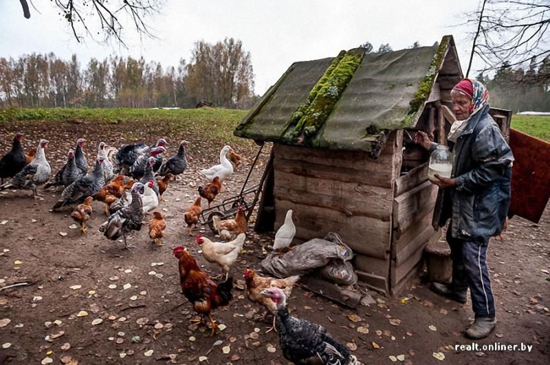 391 800x532 Белорусские отшельники уже20 летживут безсвета, газа иводопровода, нонасвоей земле
