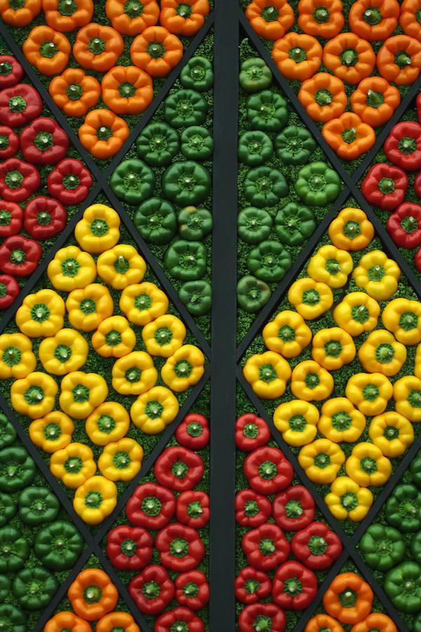 Artful Displays of Vegetables 12 Красочные овощные мозаики на выставках и ярмарках