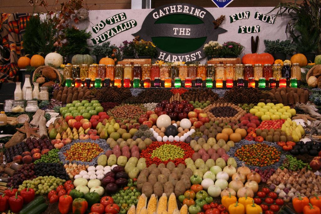 Artful Displays of Vegetables 8 Красочные овощные мозаики на выставках и ярмарках