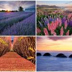 Красота пейзажей Новой Зеландии в объективе Криса Джина