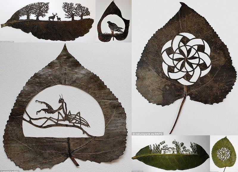 BIGPIC49 Резьба по листьям