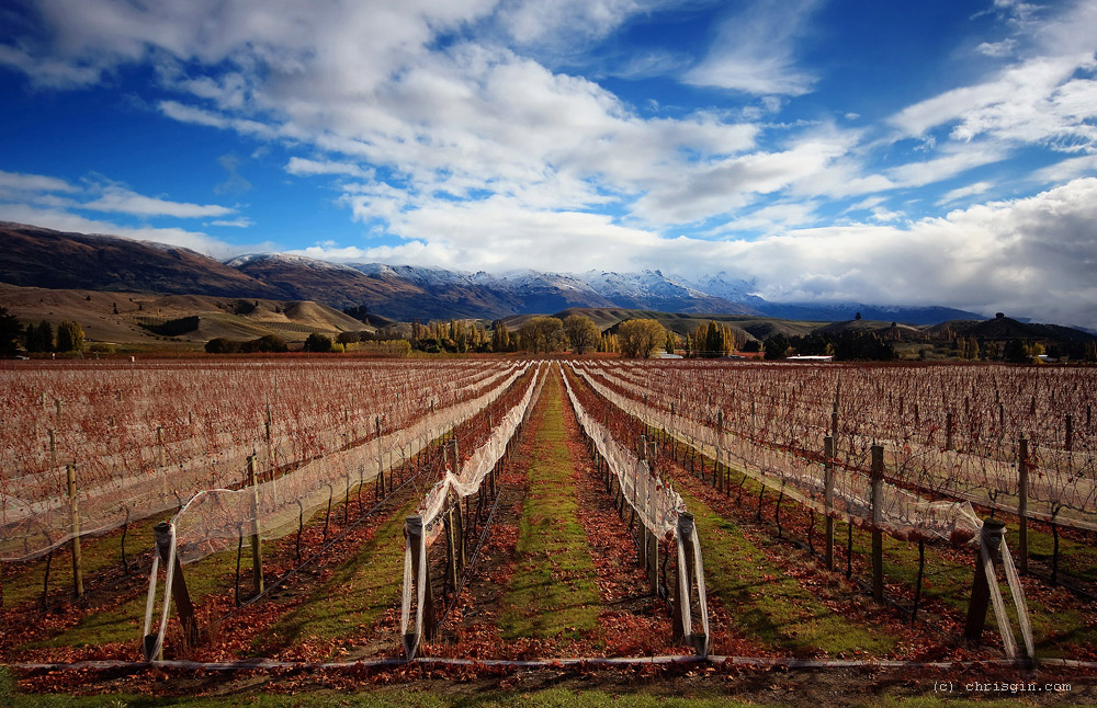 Chris Gin 6 Красота пейзажей Новой Зеландии в объективе Криса Джина