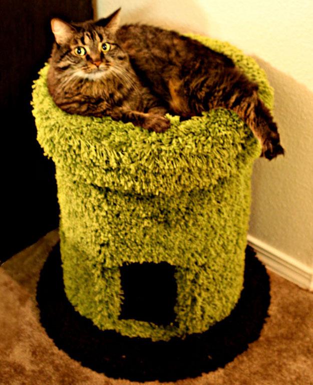 For Cats 18 Кошачьи домики