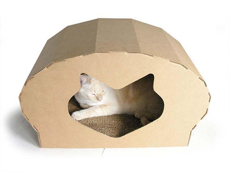 Dome Cat Habitat.