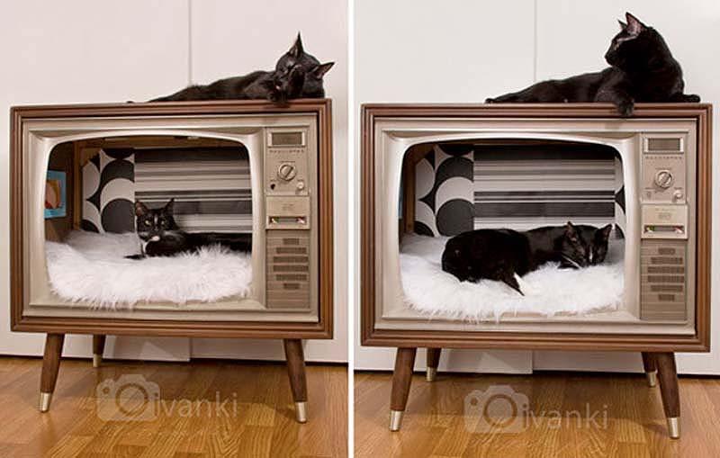 For Cats 20 Кошачьи домики