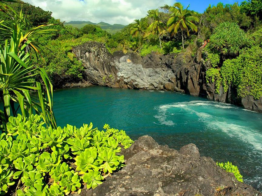 GARDEN OF EDEN ARBORETUM 1 Сады острова Мауи