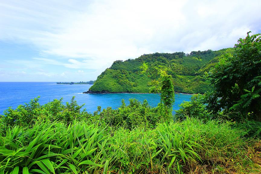GARDEN OF EDEN ARBORETUM 10 Сады острова Мауи