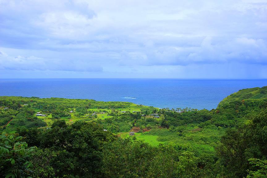 GARDEN OF EDEN ARBORETUM 11 Сады острова Мауи