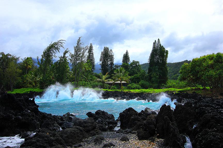 GARDEN OF EDEN ARBORETUM 17 Сады острова Мауи