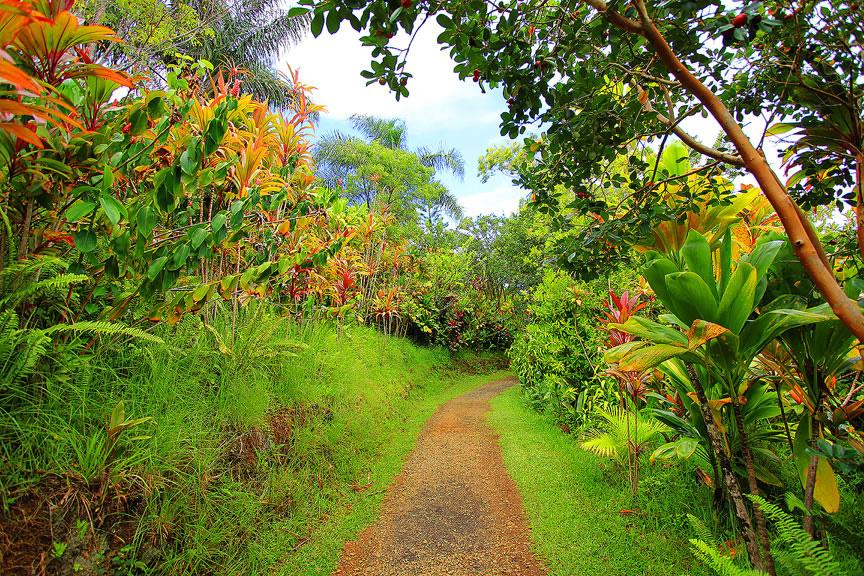 GARDEN OF EDEN ARBORETUM 22 Сады острова Мауи