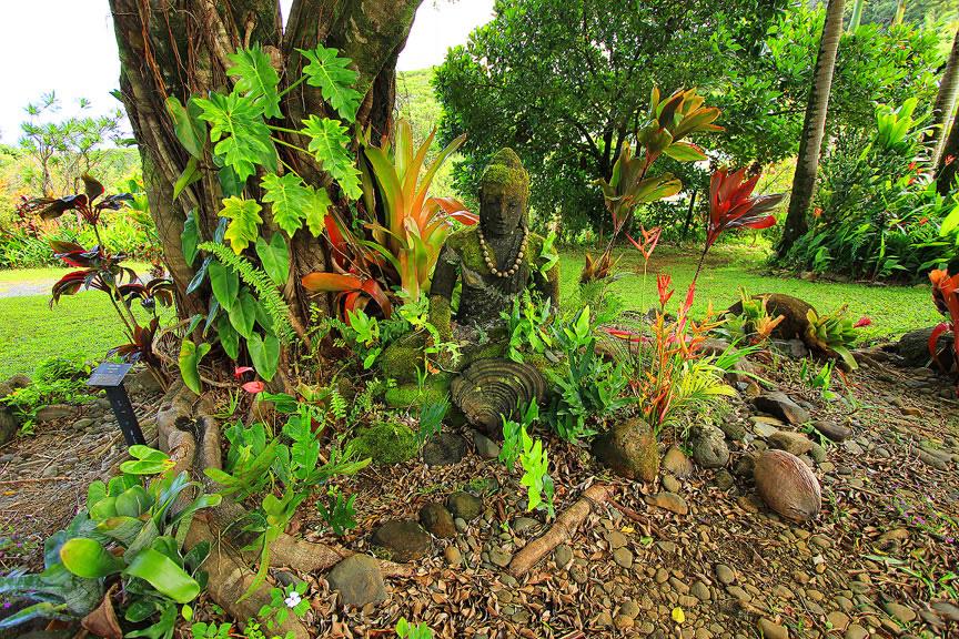 GARDEN OF EDEN ARBORETUM 28 Сады острова Мауи