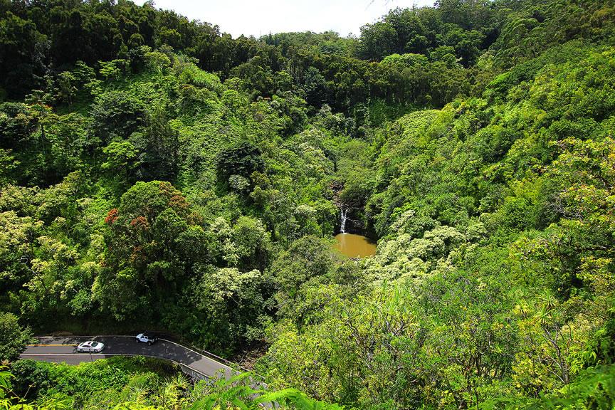 GARDEN OF EDEN ARBORETUM 3 Сады острова Мауи
