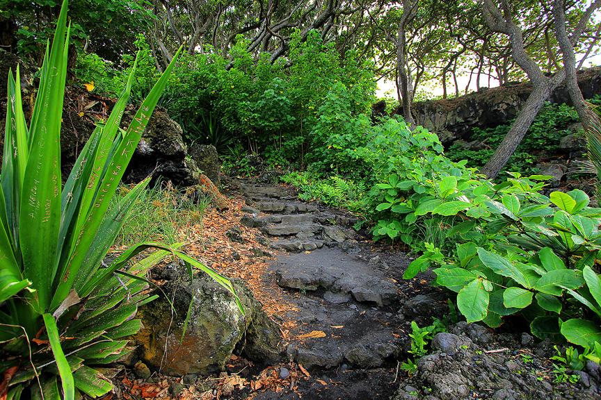 GARDEN OF EDEN ARBORETUM 30 Сады острова Мауи