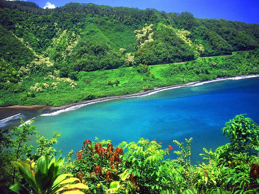 GARDEN OF EDEN ARBORETUM 32 Сады острова Мауи