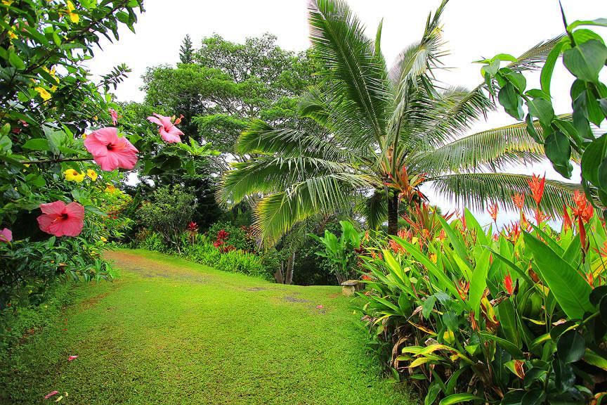 GARDEN OF EDEN ARBORETUM 6 Сады острова Мауи