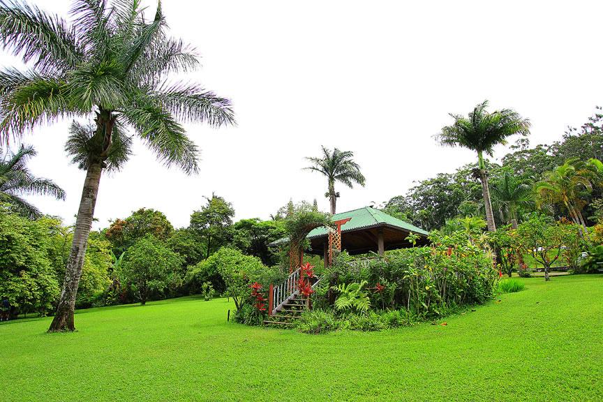 GARDEN OF EDEN ARBORETUM 8 Сады острова Мауи