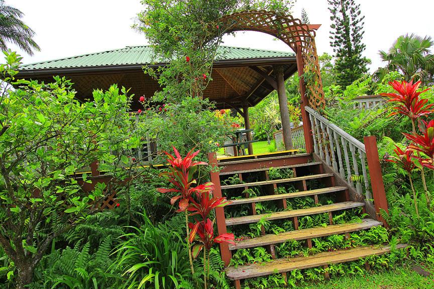 GARDEN OF EDEN ARBORETUM 9 Сады острова Мауи