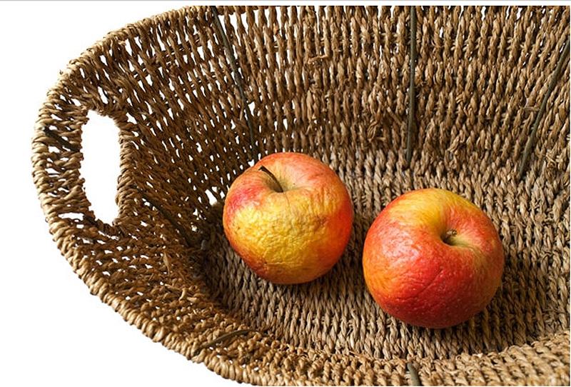 Groceries 11 Как правильно хранить продукты