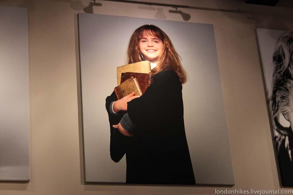 HarryPotter 100 Музей маленького мальчика в очках