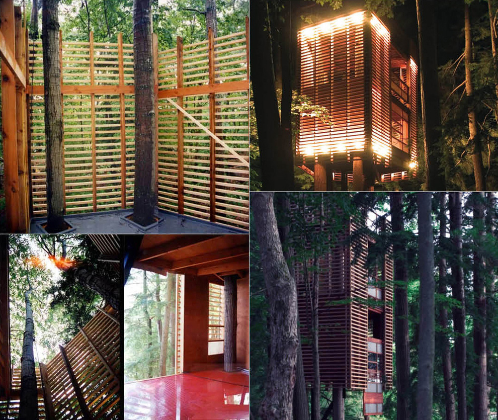 Tree Houses For Adults 3 Недетские дома на деревьях