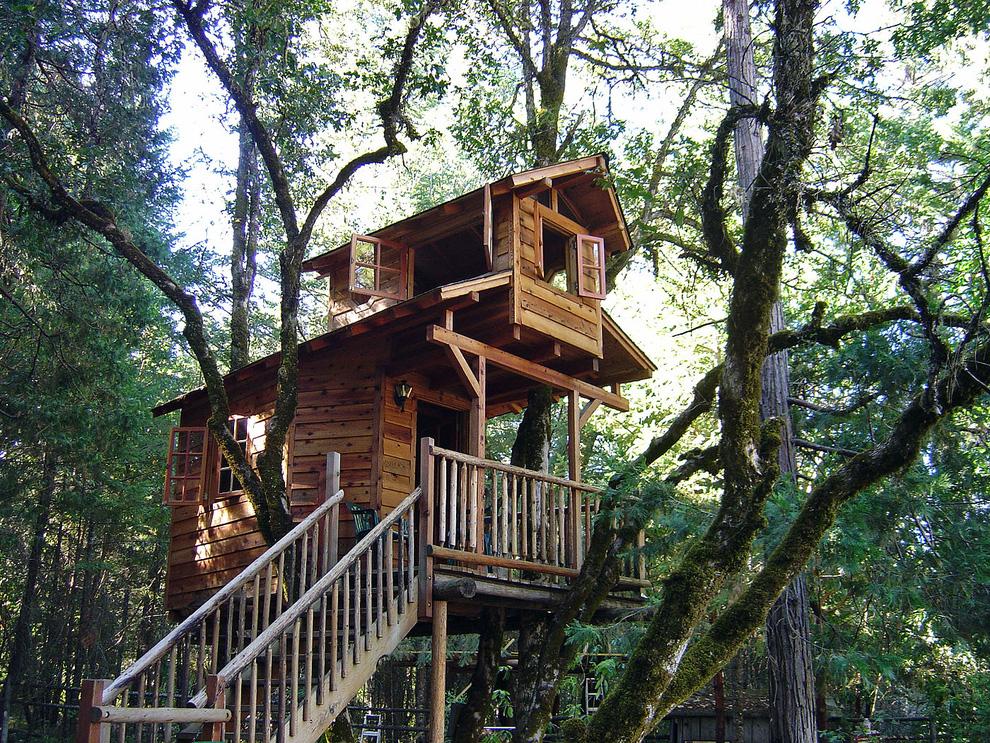 Tree Houses For Adults 4 Недетские дома на деревьях