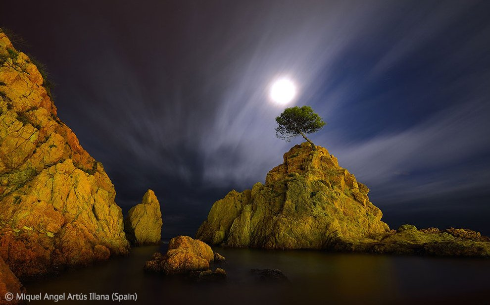 Veolia Environnement Wildlife Photographer 12 Победители Конкурса фотографий дикой природы 2012