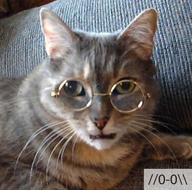 catsmiles 11 Кошачьи смайлики