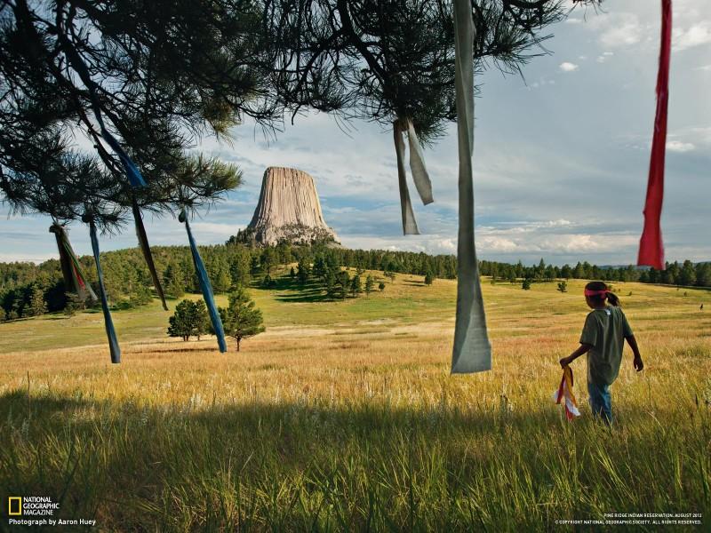 ng 24 800x600 Обои для рабочего стола от National Geographic за октябрь 2012