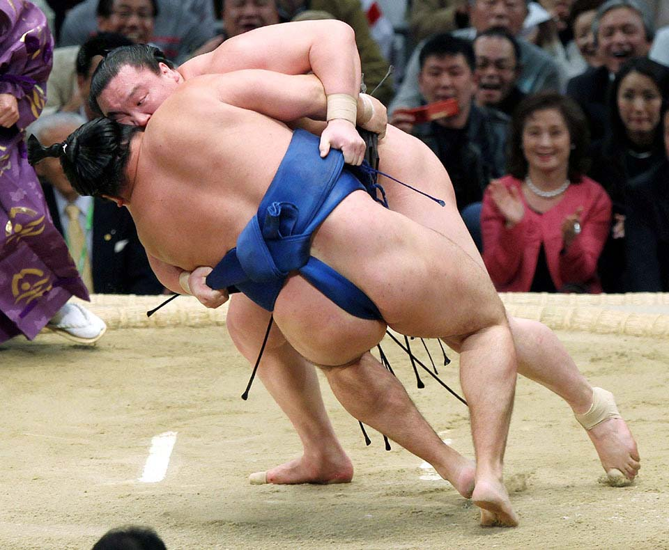 the origin and history of sumo wrestling Sumo definition, a form of wrestling in japan in which a contestant wins by forcing his opponent out of the ring or by word origin and history for sumo expand n.