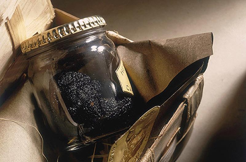 10 samyx dorogix i neobychnyx konservov 3 10 самых дорогих и необычных консервов
