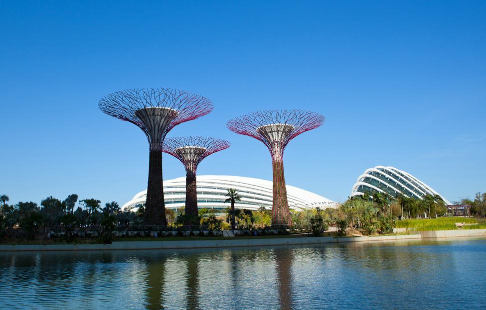 Singapur 1 Великолепные оранжереи Сингапура