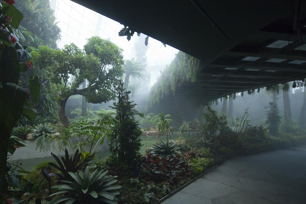 Singapur 10 Великолепные оранжереи Сингапура
