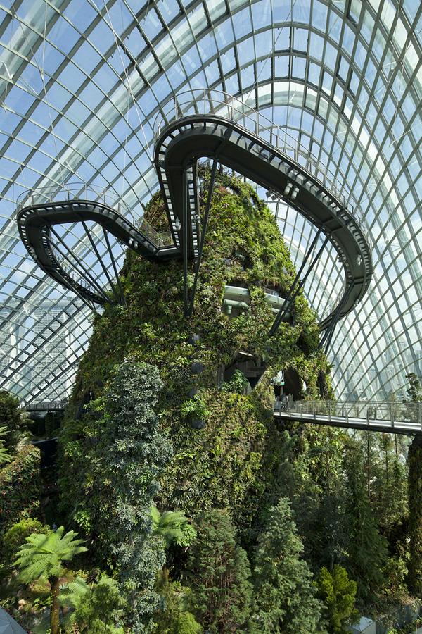 Singapur 9 Великолепные оранжереи Сингапура