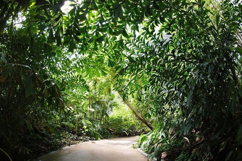 Tropical Island Resort 7 В Германии открыт крупнейший в мире крытый тропический курорт