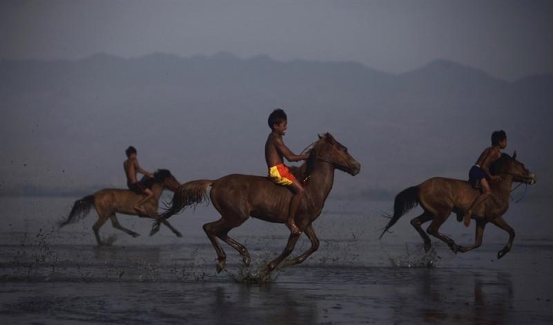 Детские скачки, или легальный способ заработка на детях в Индонезии