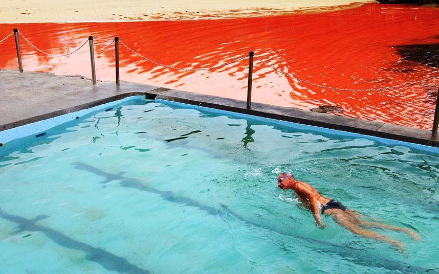 krovavoaliokean 9 Вода напляжах Австралии окрасилась кроваво красным, напугав отдыхающих