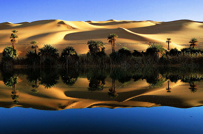 libyando Ливийская пустыня Башара Шглила