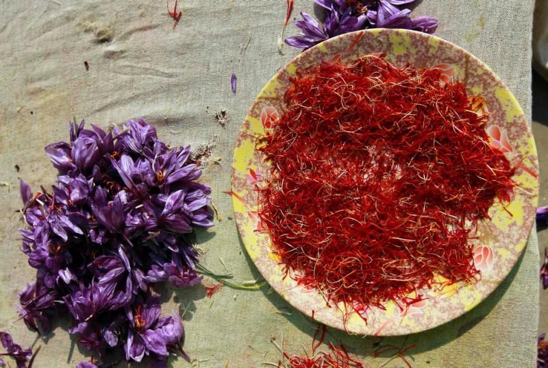Шафран, сокровище из Кашмира