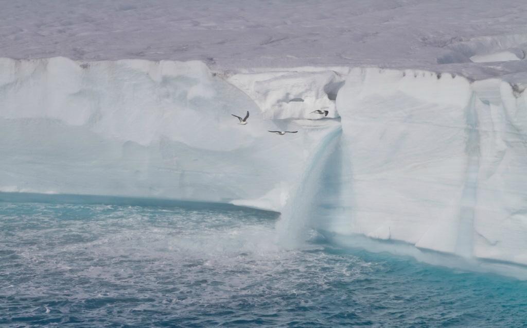 Огромные водопады в ледниках заповедника Свальбард Svalbard-8