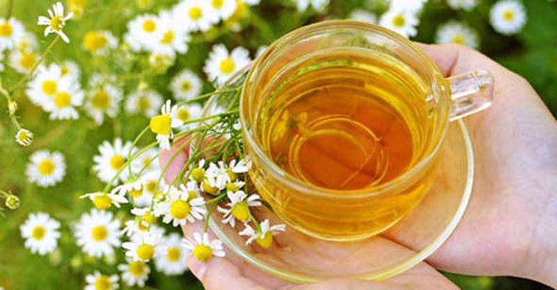 tea 10 10 целебных напитков от простуды